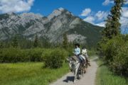 Take a guided one hour Bow River horseback ride